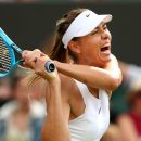 Десятки онлайн трансляций теннисных схваток
